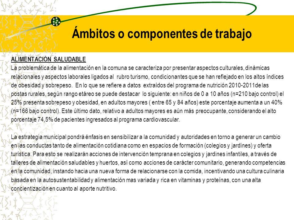 Ámbitos o componentes de trabajo ALIMENTACIÓN SALUDABLE La problemática de la alimentación en la comuna se caracteriza por presentar aspectos cultural