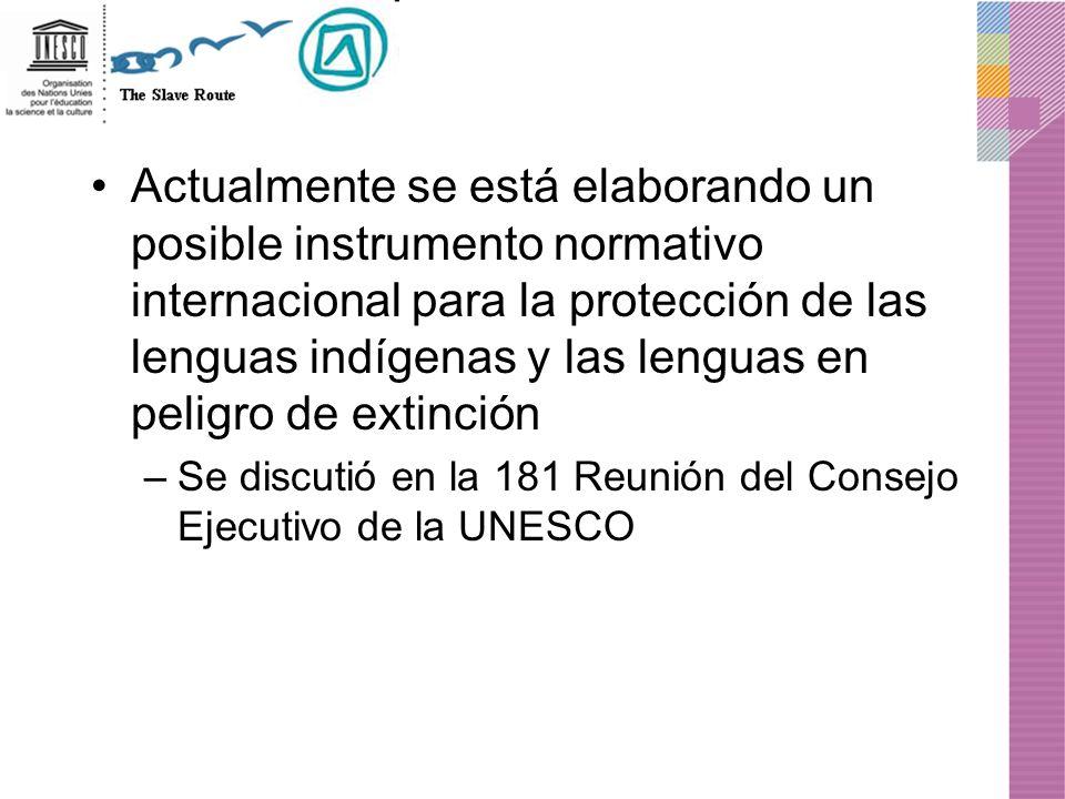 Actualmente se está elaborando un posible instrumento normativo internacional para la protección de las lenguas indígenas y las lenguas en peligro de