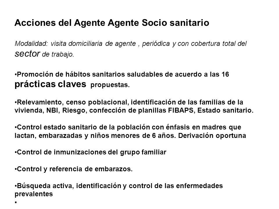 Acciones del Agente Agente Socio sanitario Modalidad: visita domiciliaria de agente, periódica y con cobertura total del sector de trabajo. Promoción