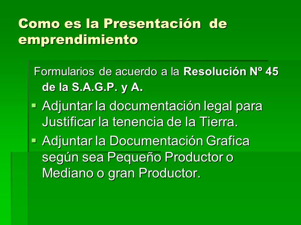 Como es la Presentación de emprendimiento Formularios de acuerdo a la Resolución Nº 45 de la S.A.G.P.