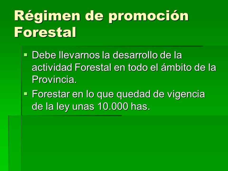 Régimen de promoción Forestal Debe llevarnos la desarrollo de la actividad Forestal en todo el ámbito de la Provincia.