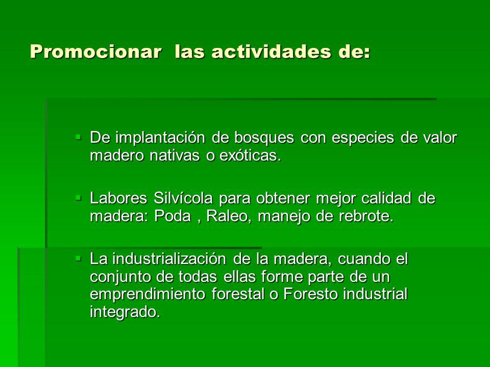 Promocionar las actividades de: De implantación de bosques con especies de valor madero nativas o exóticas.