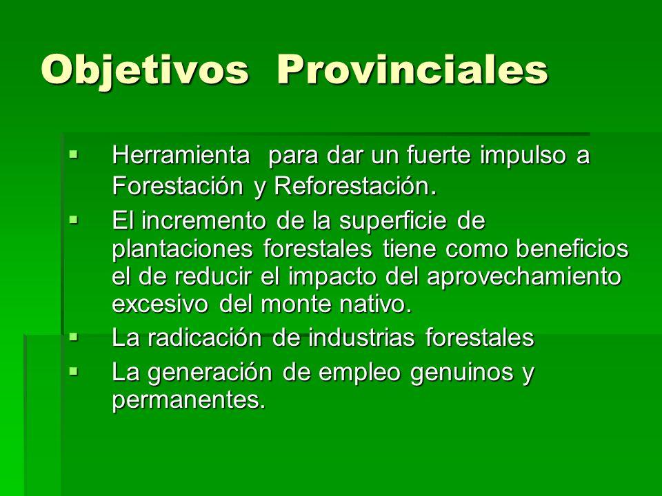 Objetivos Provinciales Herramienta para dar un fuerte impulso a Forestación y Reforestación.