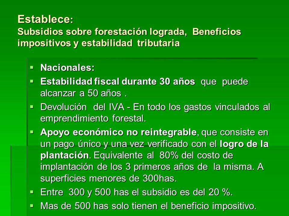 Establece : Subsidios sobre forestación lograda, Beneficios impositivos y estabilidad tributaria Nacionales: Nacionales: Estabilidad fiscal durante 30 años que puede alcanzar a 50 años.