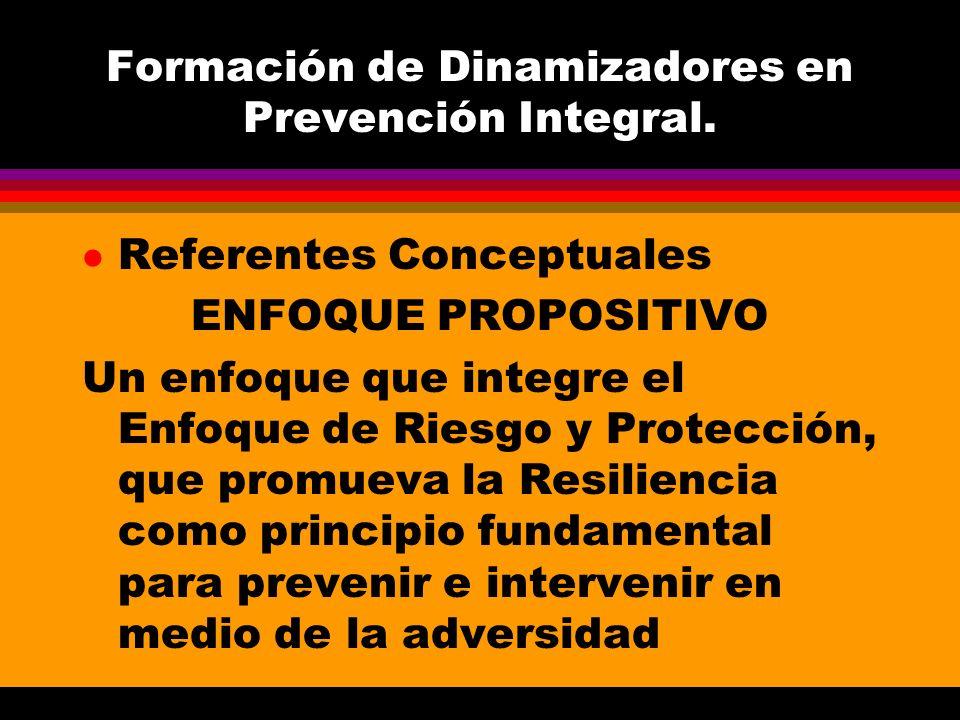 Formación de Dinamizadores en Prevención Integral. l Referentes Conceptuales ENFOQUE PROPOSITIVO Un enfoque que integre el Enfoque de Riesgo y Protecc