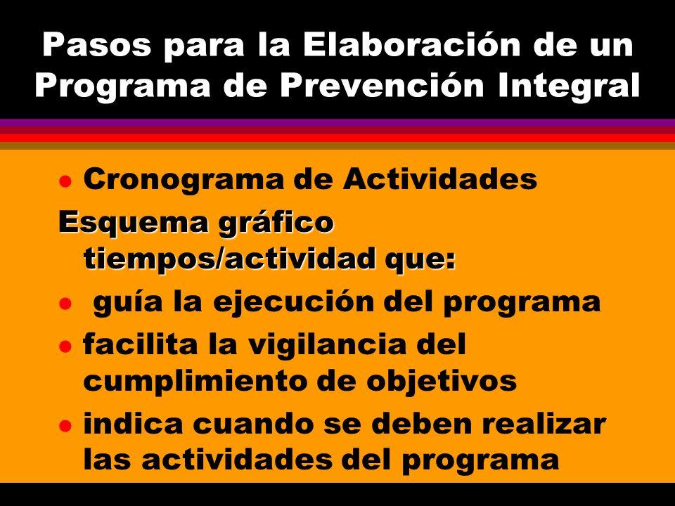Pasos para la Elaboración de un Programa de Prevención Integral l Sistemas de Evaluación Deben definirse desde la concepción misma del proyecto Deben definirse los instrumentos Debe contemplar Evaluación de procesos Evaluación de resultados Evaluación de impacto ( si es posible)