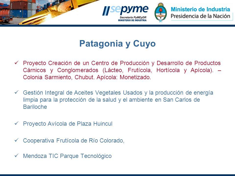 Patagonia y Cuyo Proyecto Creación de un Centro de Producción y Desarrollo de Productos Cárnicos y Conglomerados (Lácteo, Frutícola, Hortícola y Apíco