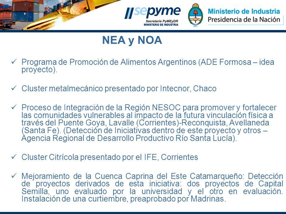 Programa de Promoción de Alimentos Argentinos (ADE Formosa – idea proyecto). Cluster metalmecánico presentado por Intecnor, Chaco Proceso de Integraci