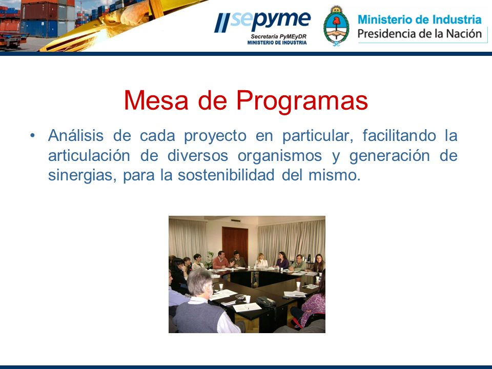 Mesa de Programas Análisis de cada proyecto en particular, facilitando la articulación de diversos organismos y generación de sinergias, para la soste
