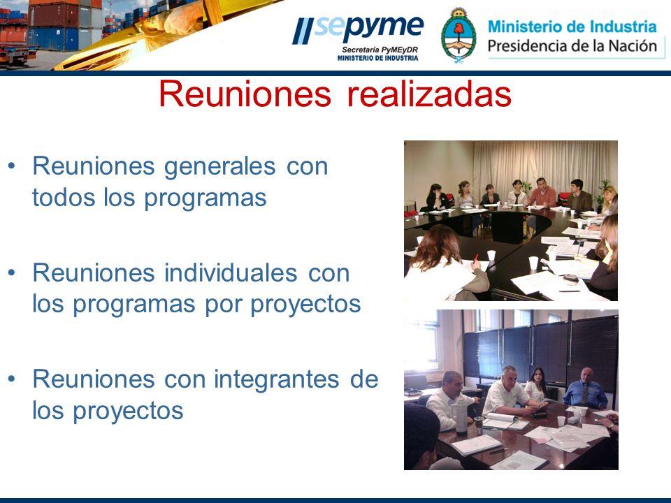 Reuniones realizadas Reuniones generales con todos los programas Reuniones individuales con los programas por proyectos Reuniones con integrantes de l