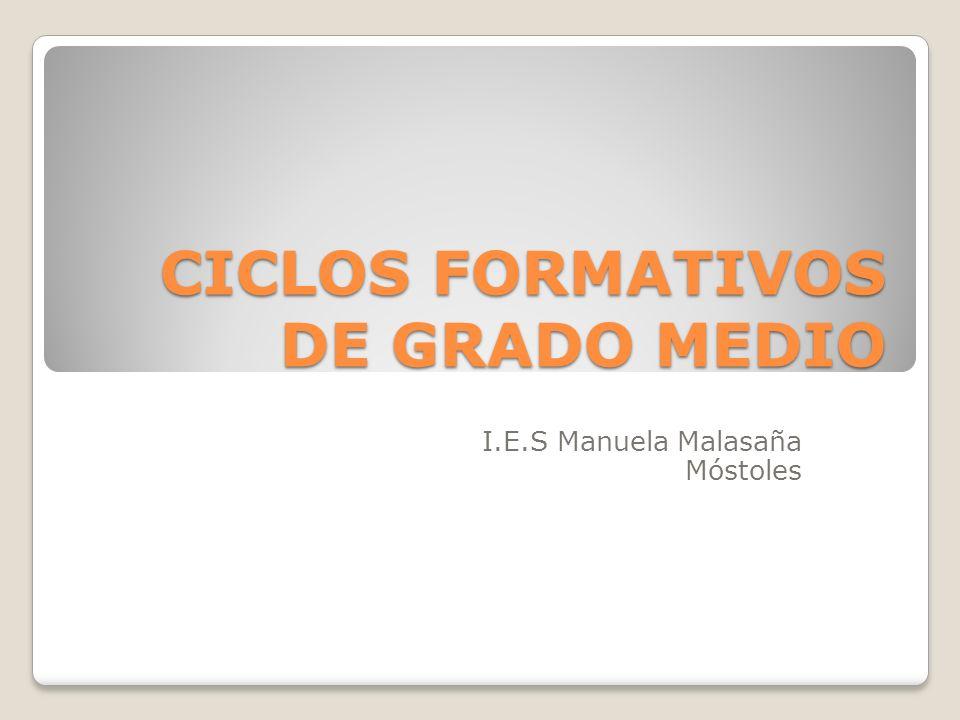 CICLOS FORMATIVOS DE GRADO MEDIO I.E.S Manuela Malasaña Móstoles