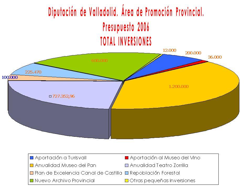 NºInversiónImportePorcentaje sobre Total 1Mejoras en Centros de Turisvall200.0006,45 2Mejoras en Museo del Vino36.0001,16 3Anualidad Museo del Pan1.200.00038,70 4Anualidad del Teatro Zorrilla727.352,9623,46 5Plan de Excelencia Canal de Castilla100.0003,22 6Repoblación Forestal225.4707,27 7Nuevo Archivo Provincial600.00019,35 8Otras pequeñas Inversiones12.0000,39 TOTAL3.100.822,96100
