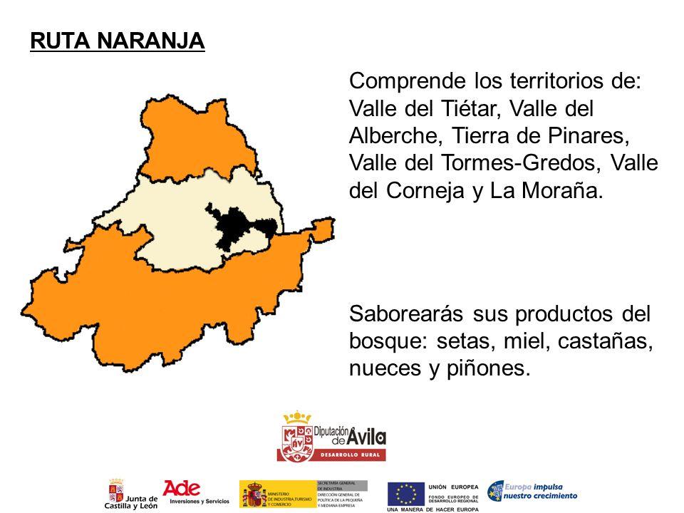 RUTA NARANJA Comprende los territorios de: Valle del Tiétar, Valle del Alberche, Tierra de Pinares, Valle del Tormes-Gredos, Valle del Corneja y La Mo