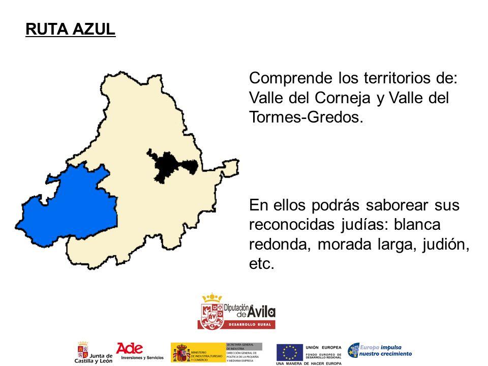 RUTA AZUL Comprende los territorios de: Valle del Corneja y Valle del Tormes-Gredos. En ellos podrás saborear sus reconocidas judías: blanca redonda,