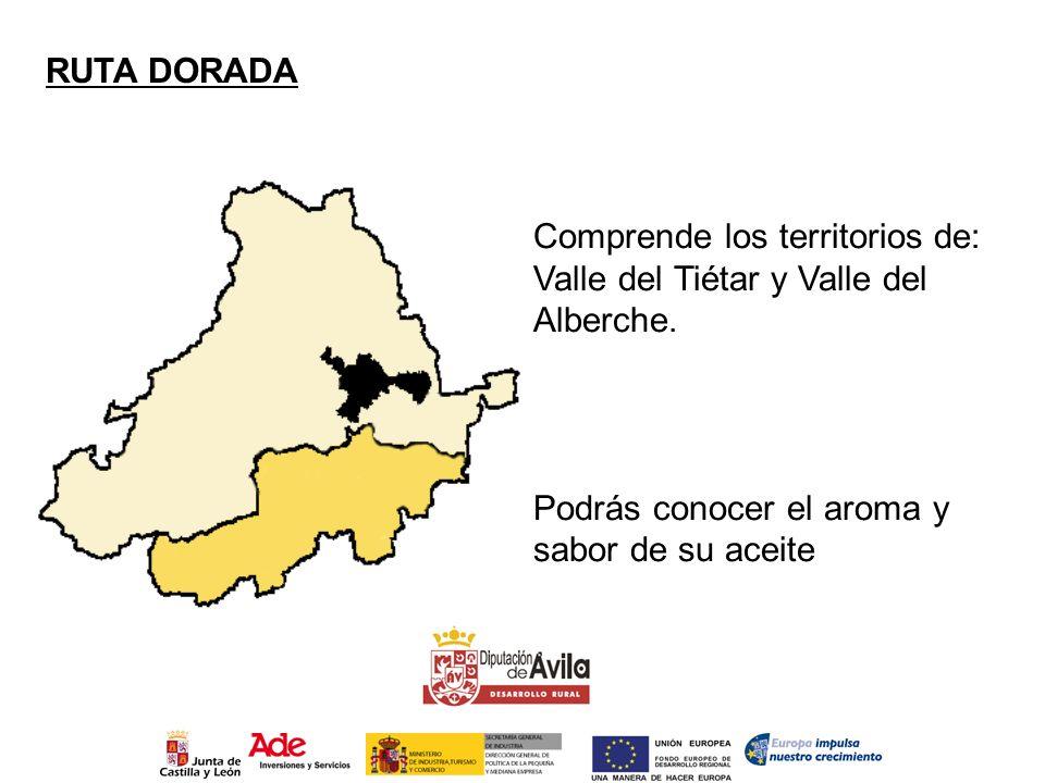 RUTA DORADA Comprende los territorios de: Valle del Tiétar y Valle del Alberche. Podrás conocer el aroma y sabor de su aceite