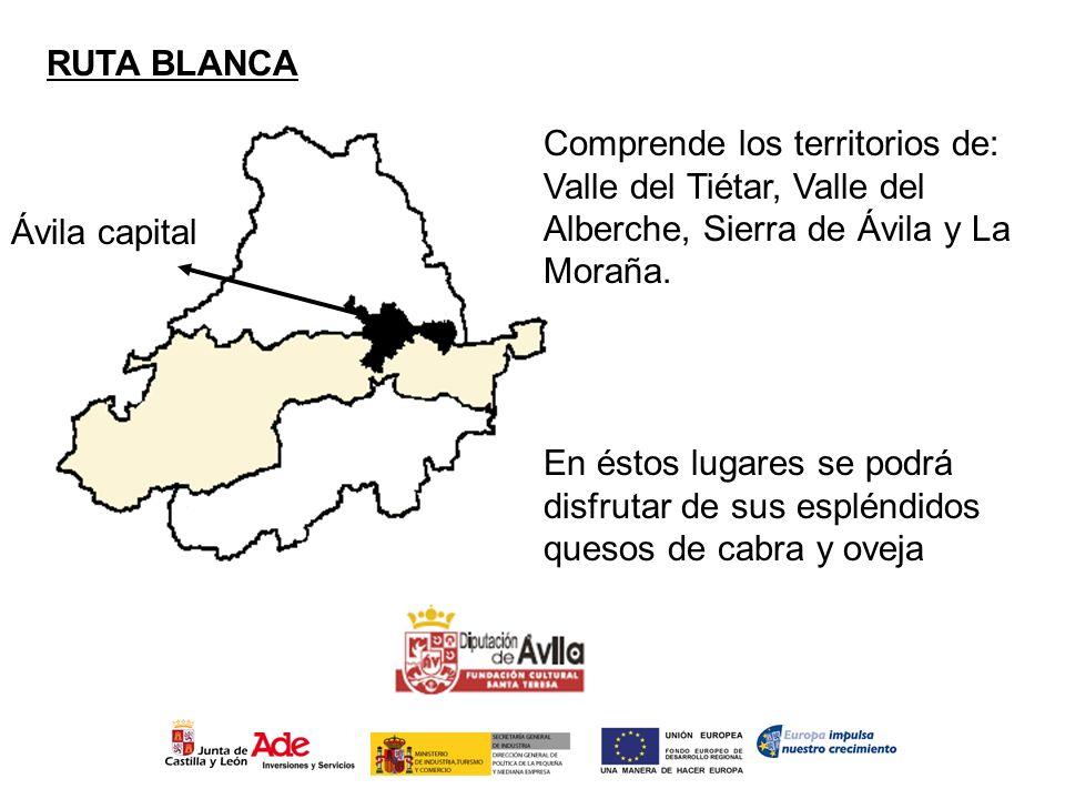 Ávila capital RUTA BLANCA Comprende los territorios de: Valle del Tiétar, Valle del Alberche, Sierra de Ávila y La Moraña. En éstos lugares se podrá d