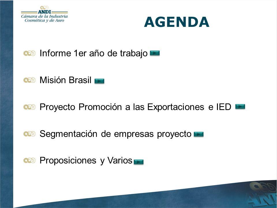 AGENDA Informe 1er año de trabajo Misión Brasil Proyecto Promoción a las Exportaciones e IED Segmentación de empresas proyecto Proposiciones y Varios