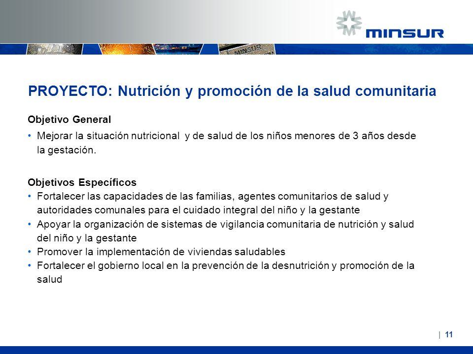 PROYECTO: Nutrición y promoción de la salud comunitaria Objetivo General Mejorar la situación nutricional y de salud de los niños menores de 3 años de