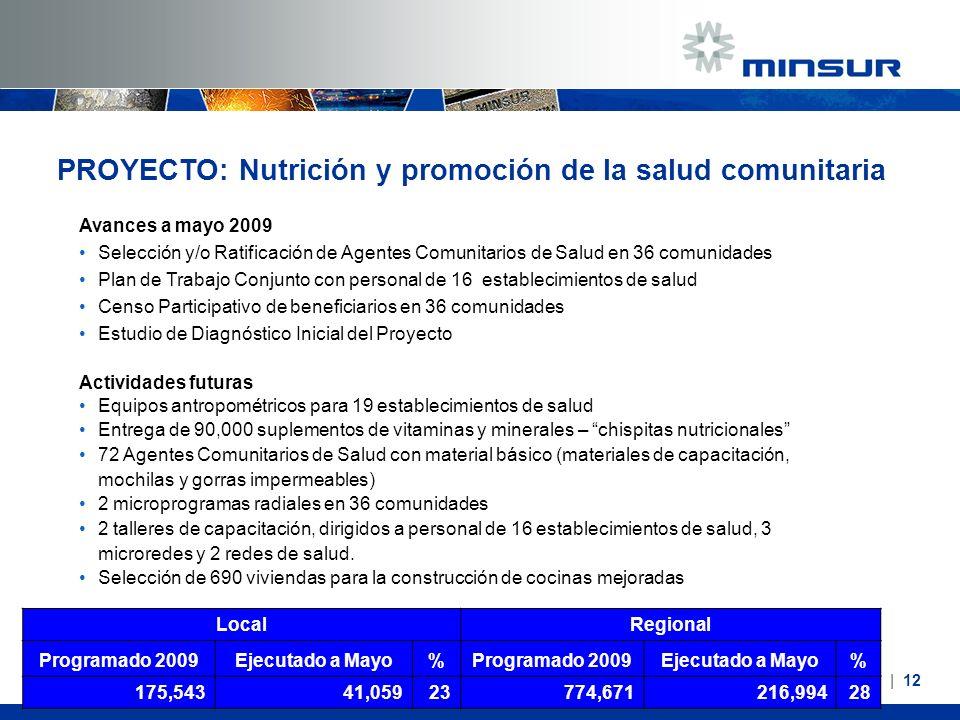 PROYECTO: Nutrición y promoción de la salud comunitaria Avances a mayo 2009 Selección y/o Ratificación de Agentes Comunitarios de Salud en 36 comunida