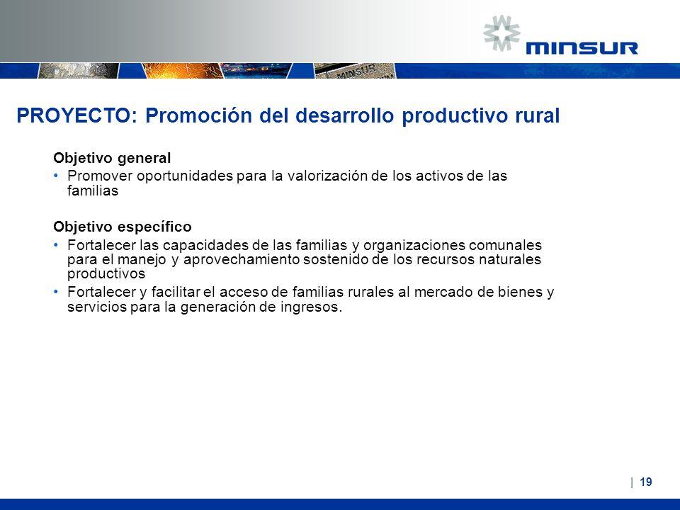 PROYECTO: Promoción del desarrollo productivo rural Objetivo general Promover oportunidades para la valorización de los activos de las familias Objeti