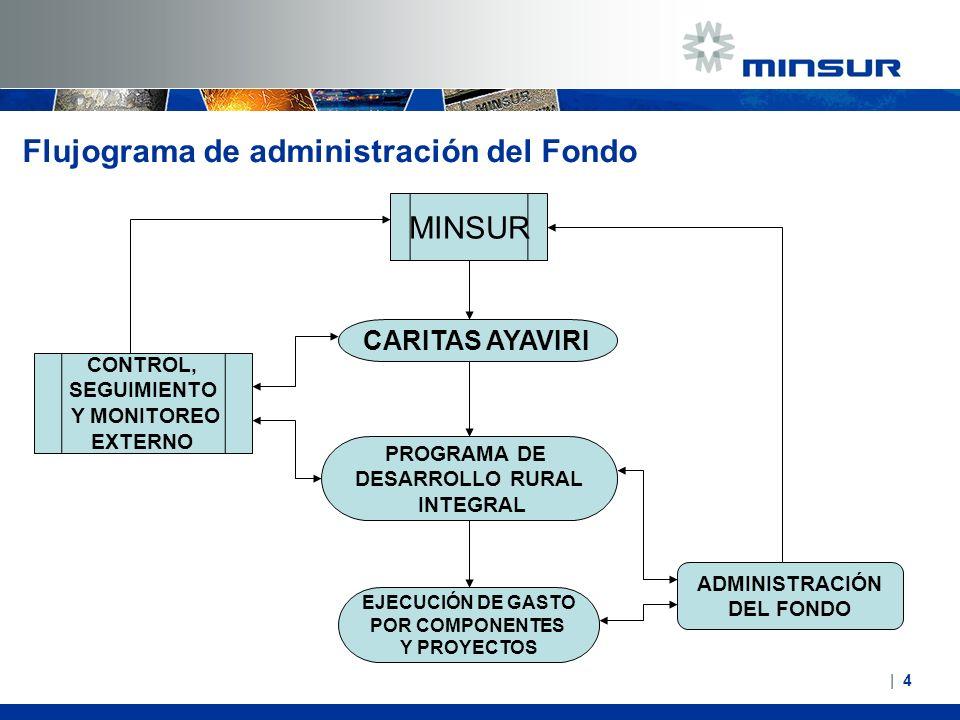  4  4 Flujograma de administración del Fondo MINSUR CARITAS AYAVIRI PROGRAMA DE DESARROLLO RURAL INTEGRAL EJECUCIÓN DE GASTO POR COMPONENTES Y PROYEC