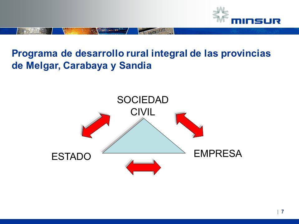 Programa de desarrollo rural integral de las provincias de Melgar, Carabaya y Sandia SOCIEDAD CIVIL ESTADO EMPRESA   7  7