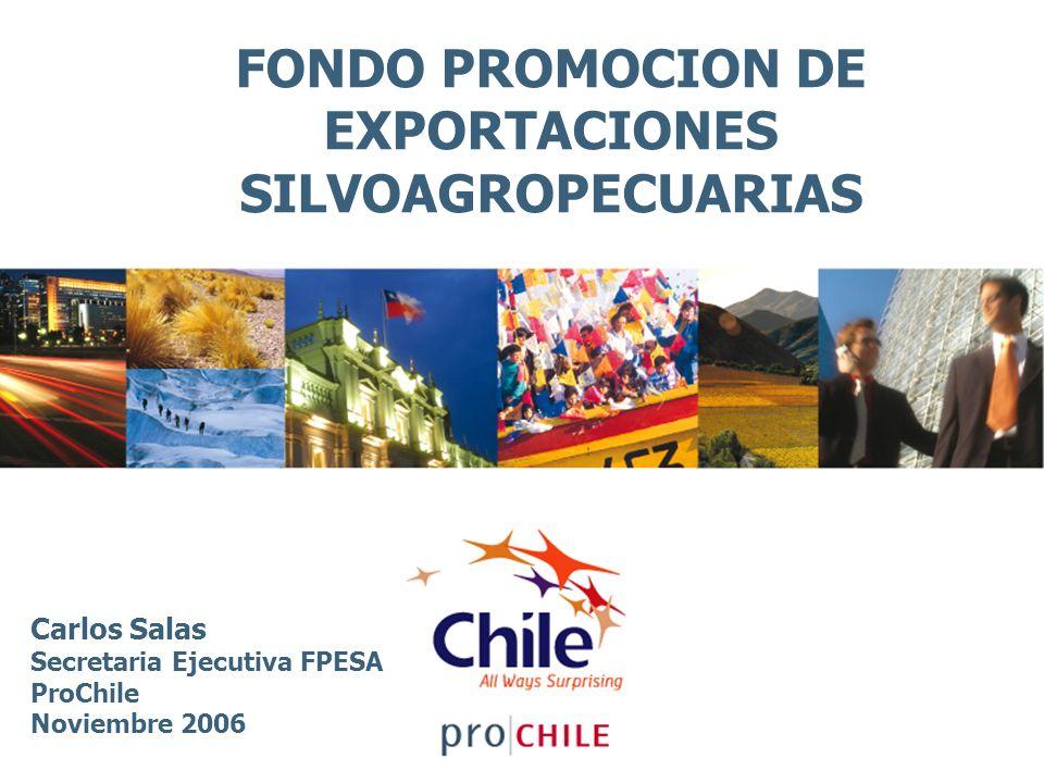 FONDO PROMOCION DE EXPORTACIONES SILVOAGROPECUARIAS Carlos Salas Secretaria Ejecutiva FPESA ProChile Noviembre 2006