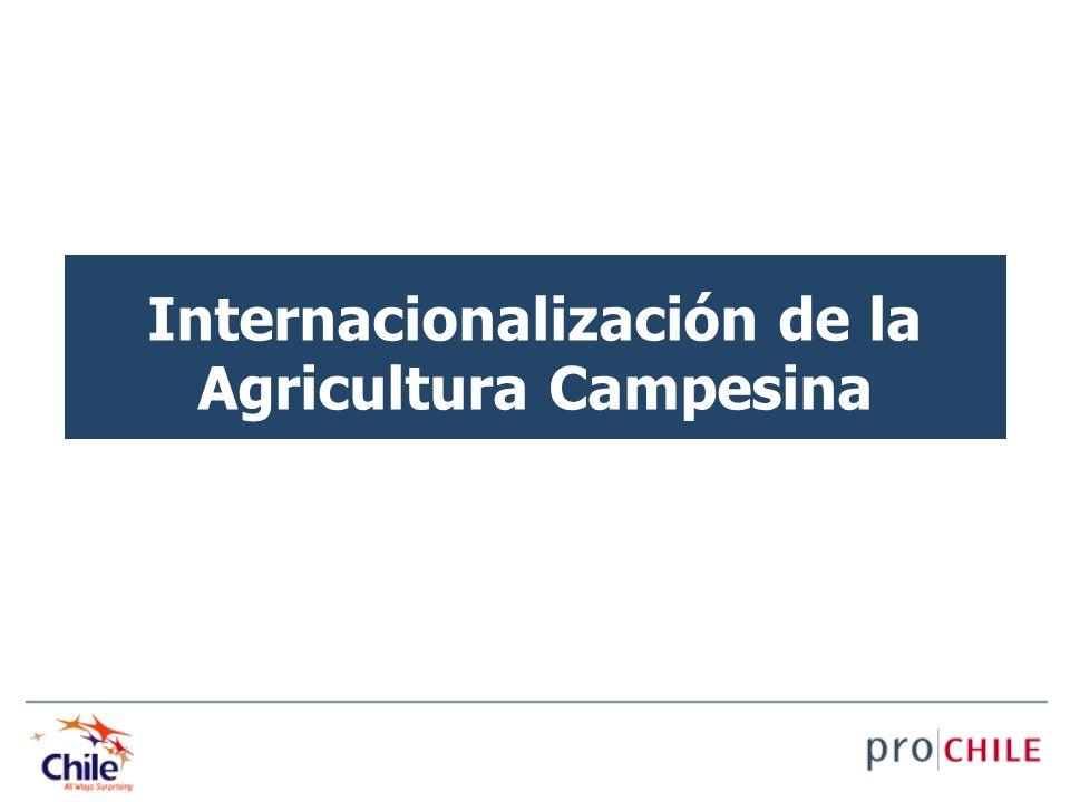 Internacionalización de la Agricultura Campesina