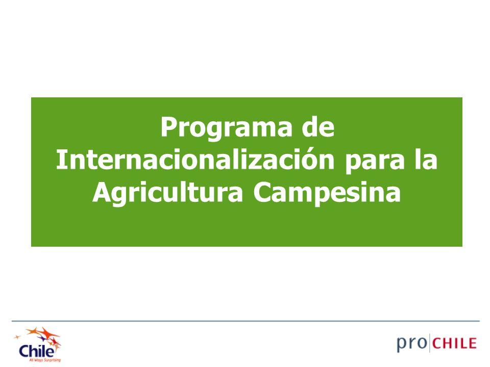 Programa de Internacionalización para la Agricultura Campesina