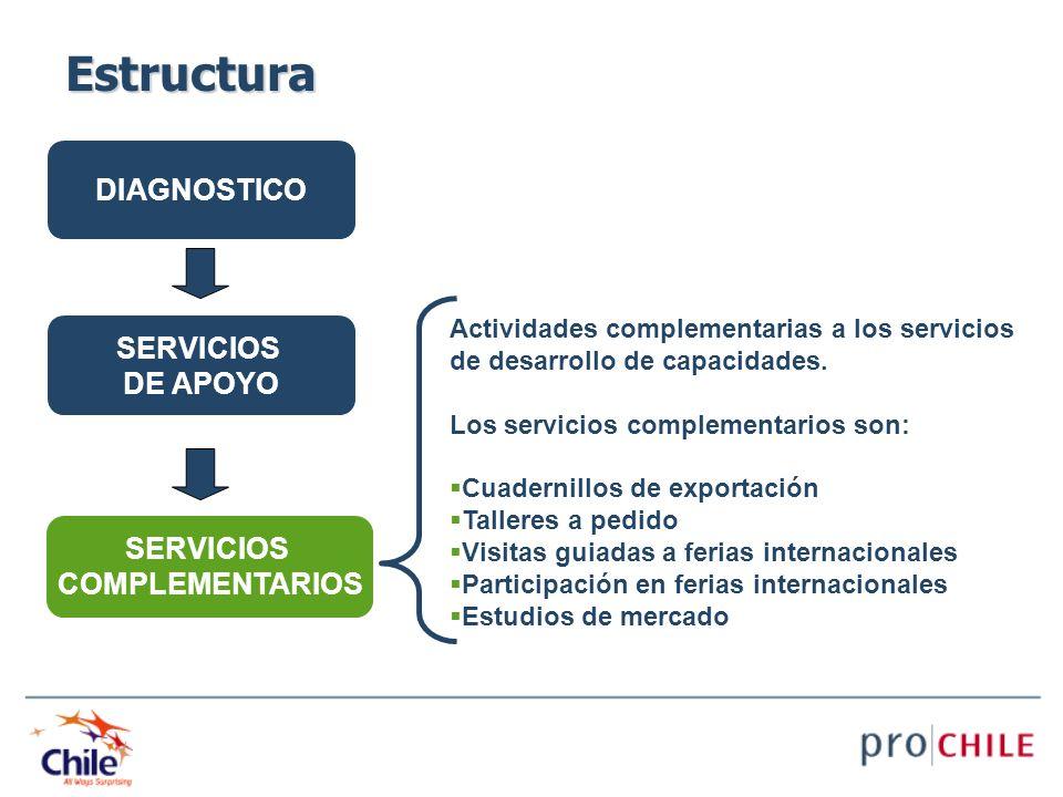 DIAGNOSTICO SERVICIOS DE APOYO SERVICIOS COMPLEMENTARIOS Actividades complementarias a los servicios de desarrollo de capacidades. Los servicios compl