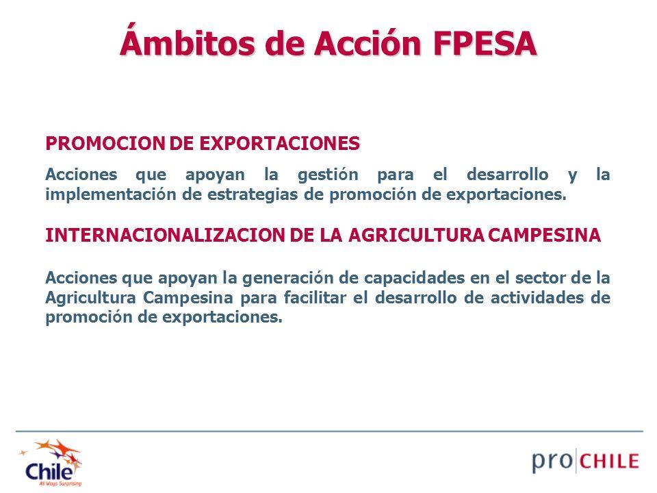 Ámbitos de Acción FPESA PROMOCION DE EXPORTACIONES Acciones que apoyan la gesti ó n para el desarrollo y la implementaci ó n de estrategias de promoci