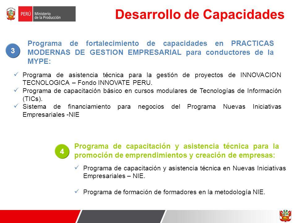 Desarrollo de Capacidades Programa de asistencia técnica para la gestión de proyectos de INNOVACION TECNOLOGICA – Fondo INNOVATE PERU. Programa de cap