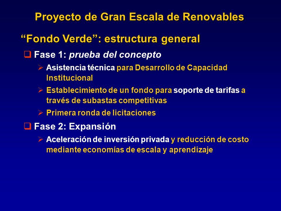 Proyecto de Gran Escala de Renovables Fase 1: prueba del concepto Asistencia técnica para Desarrollo de Capacidad Institucional Establecimiento de un