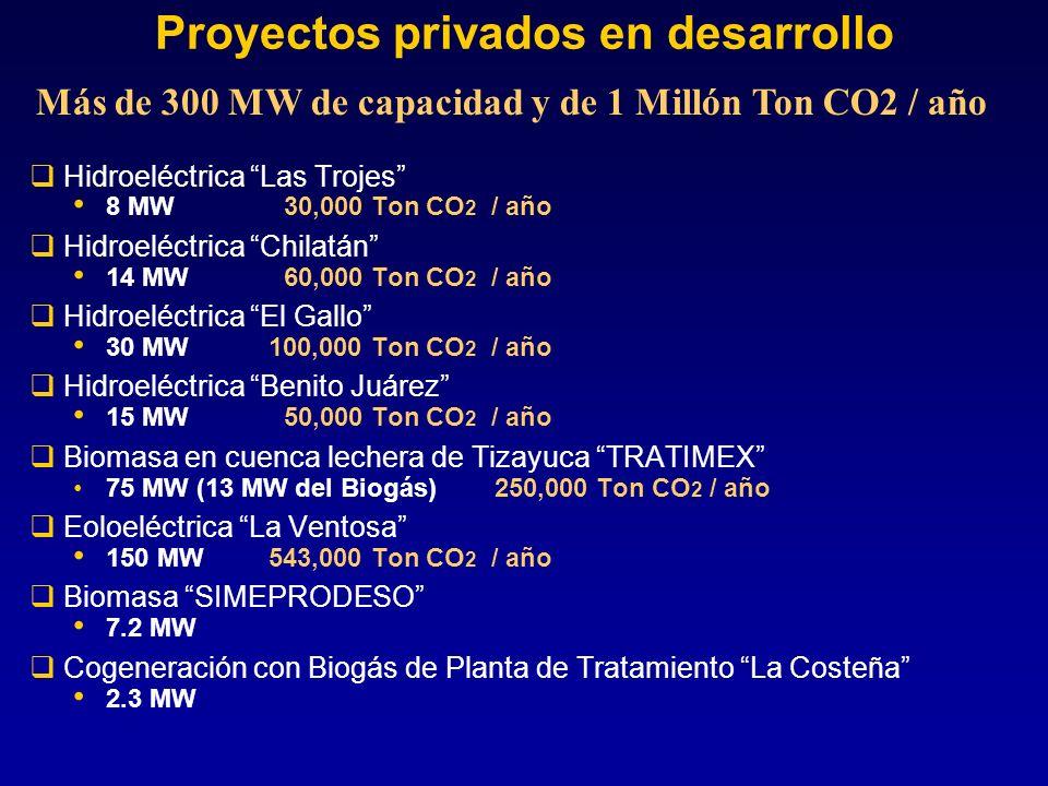 Corredor eólico de Oaxaca Potencial estimado en más de 30,000 MW (accesibles en este momento sólo el 10%, por infraestructura de caminos y otros aspectos) El factor de planta identificado por la CFE es cercano al 50% (en Europa y USA es común 17 a 20%) Considerando 3,000 MW la reducción potencial de emisiones sería del órden de 9 Millones de Ton CO 2 / año