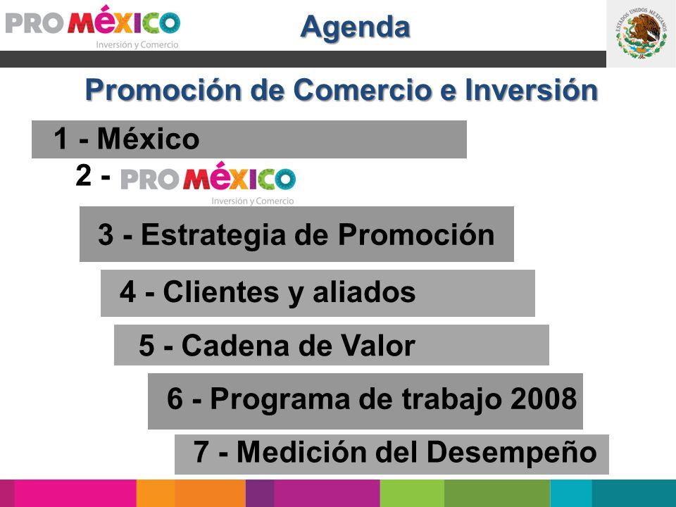 4 - Clientes y aliados 1 - México 5. Cadena de valor 6 - Programa de trabajo 2008 7 - Medición del Desempeño 3 - Estrategia de Promoción 5 - Cadena de
