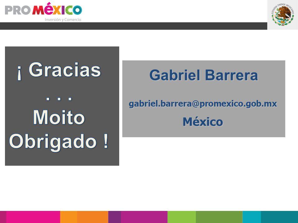 gabriel.barrera@promexico.gob.mxMéxico