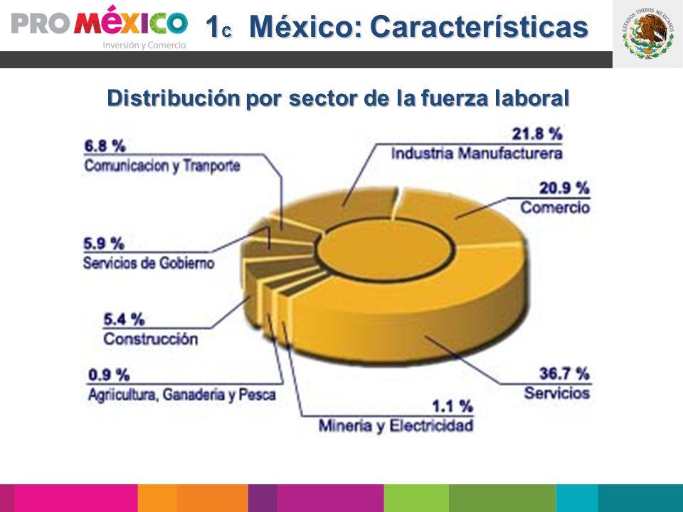 1 c México: Características Distribución por sector de la fuerza laboral
