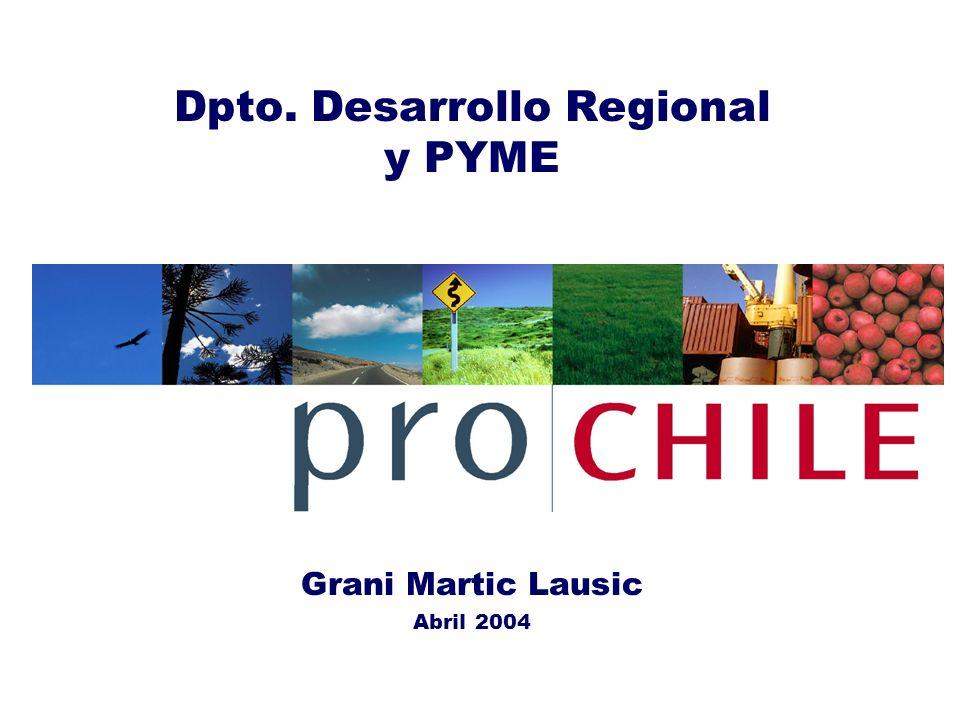 Dpto. Desarrollo Regional y PYME Grani Martic Lausic Abril 2004