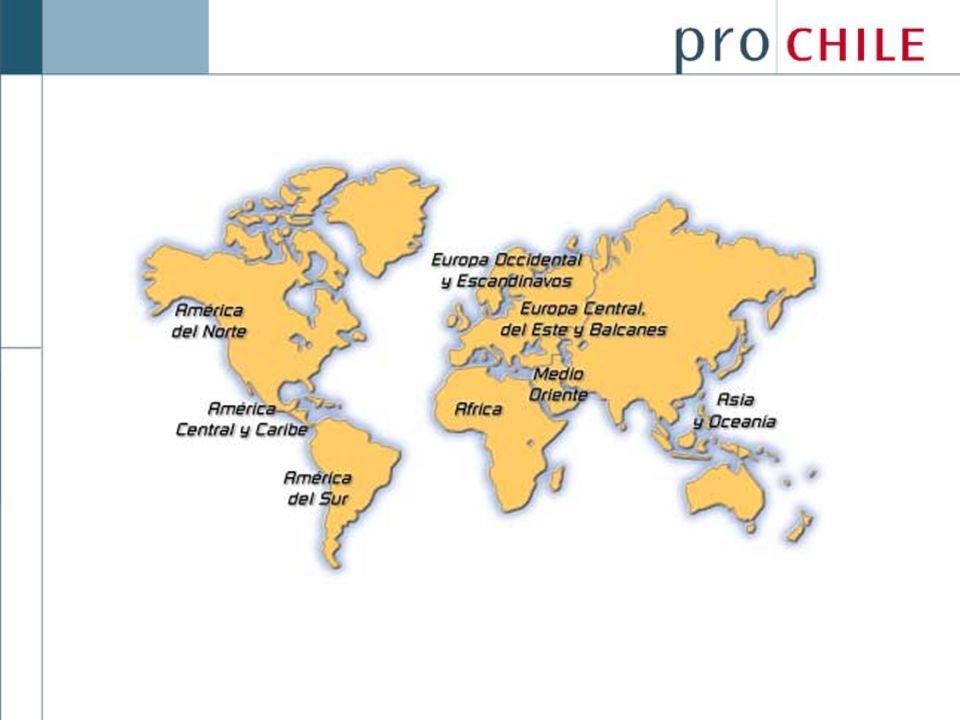 Considerando como pilares los 3 ejes señalados, la elaboración de los Planes de Trabajo, además, considerarán: Programas Institucionales de Promoción de Exportaciones (Sabores de Chile, Ferias, Misiones equipo país) Programa Chile Piensa Programas de Desarrollo Exportador, tales como INTERPyME, INTERPAC, Concurso de Promoción de Exportaciones...