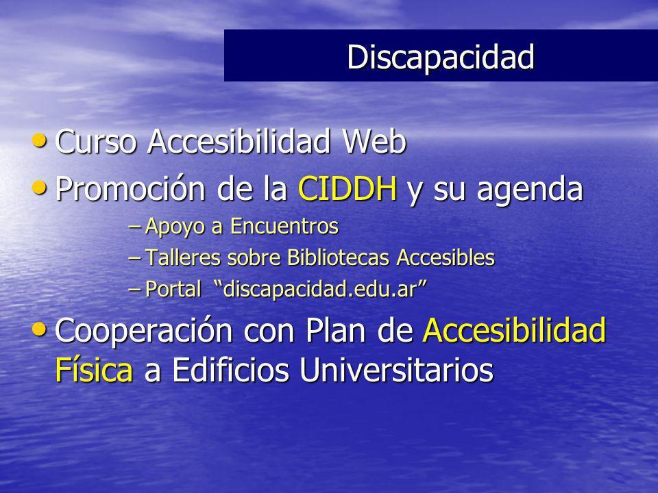 Curso Accesibilidad Web Curso Accesibilidad Web Promoción de la CIDDH y su agenda Promoción de la CIDDH y su agenda –Apoyo a Encuentros –Talleres sobr
