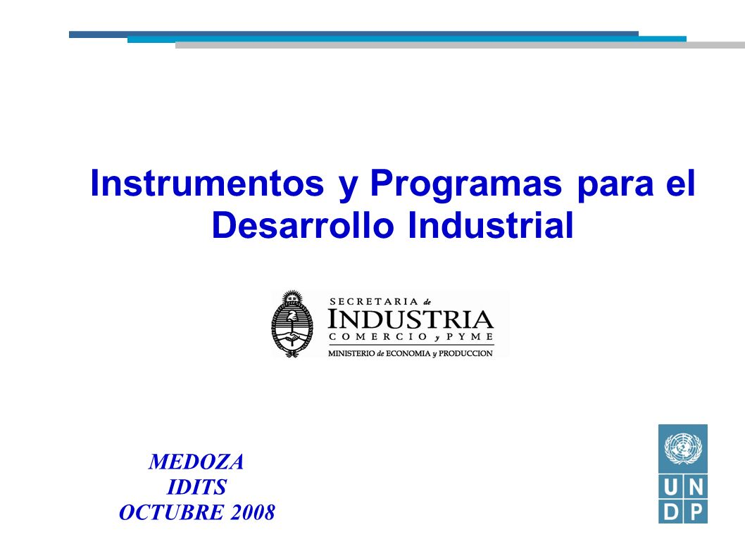 Instrumentos y Programas para el Desarrollo Industrial MEDOZA IDITS OCTUBRE 2008