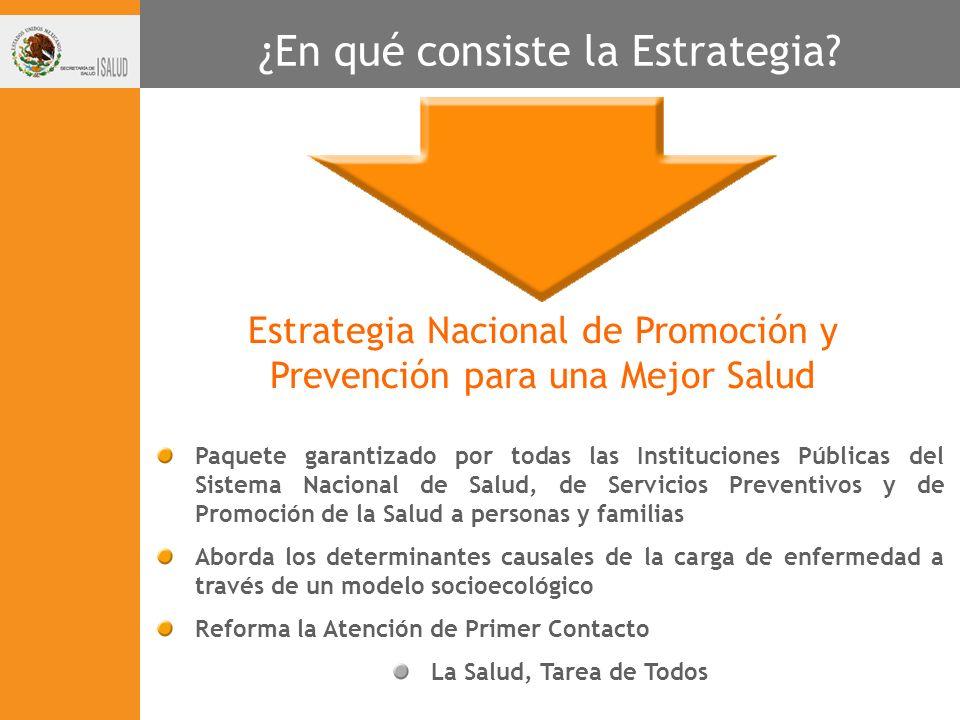 Paquete garantizado por todas las Instituciones Públicas del Sistema Nacional de Salud, de Servicios Preventivos y de Promoción de la Salud a personas