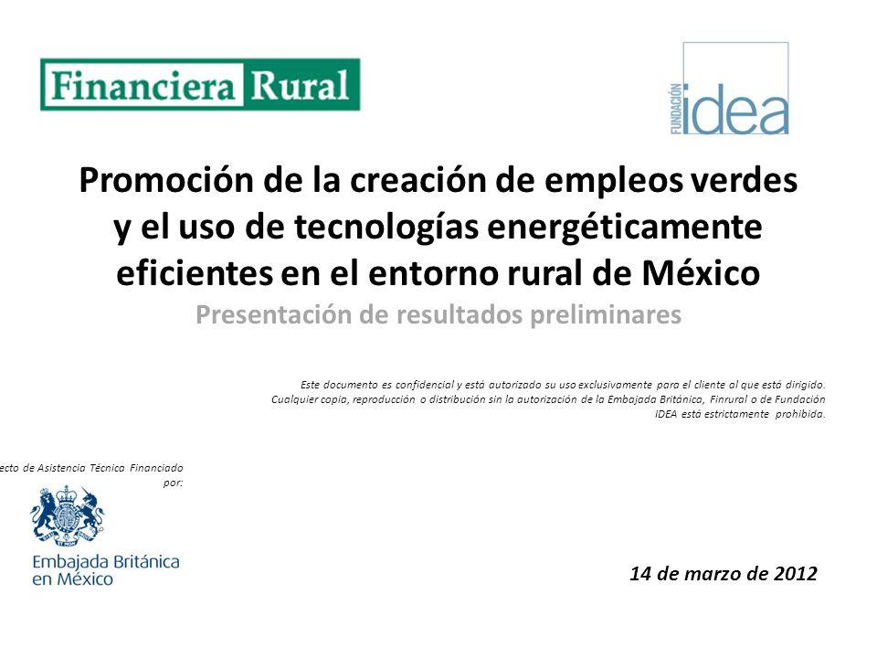 Promoción de la creación de empleos verdes y el uso de tecnologías energéticamente eficientes en el entorno rural de México Presentación de resultados