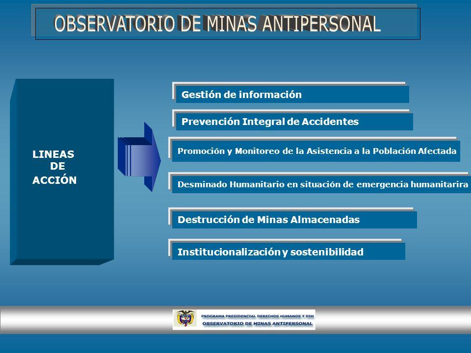LINEAS DE ACCIÓN Prevención Integral de Accidentes Promoción y Monitoreo de la Asistencia a la Población Afectada Desminado Humanitario en situación d