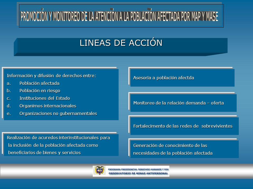LINEAS DE ACCIÓN Información y difusión de derechos entre: a.Población afectada b.Población en riesgo c.Instituciones del Estado d.Organimos internaci