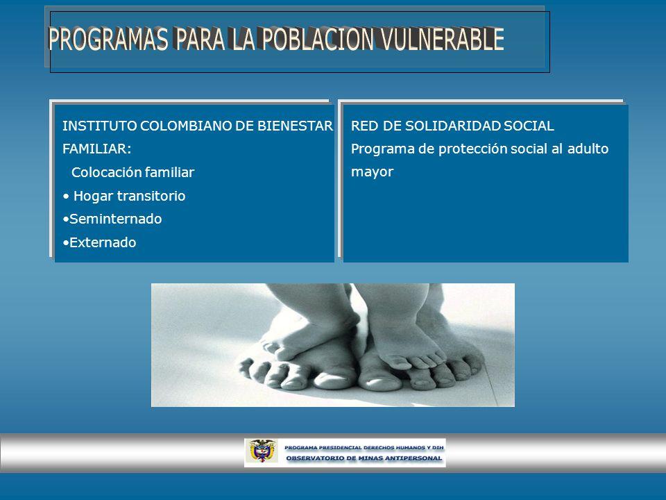 RED DE SOLIDARIDAD SOCIAL Programa de protección social al adulto mayor INSTITUTO COLOMBIANO DE BIENESTAR FAMILIAR: Colocación familiar Hogar transito