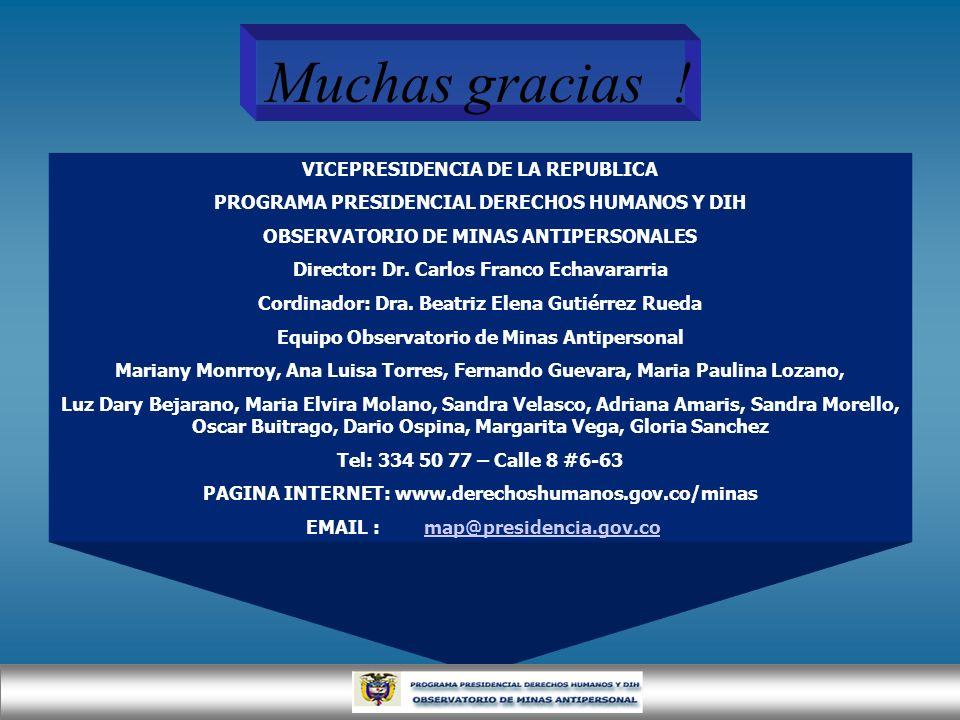 VICEPRESIDENCIA DE LA REPUBLICA PROGRAMA PRESIDENCIAL DERECHOS HUMANOS Y DIH OBSERVATORIO DE MINAS ANTIPERSONALES Director: Dr. Carlos Franco Echavara