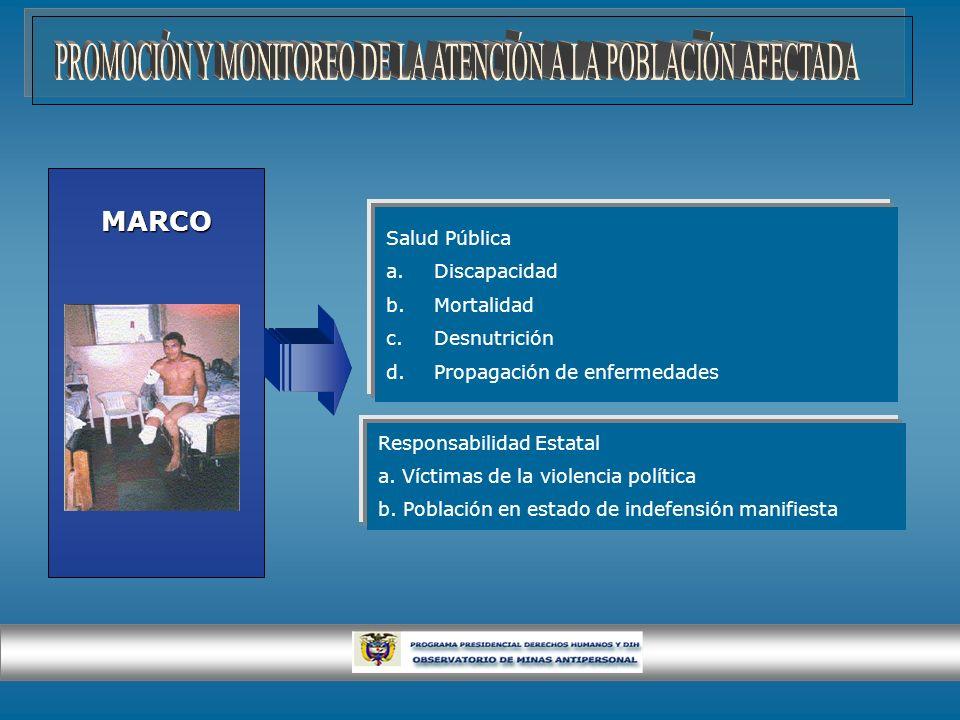 MARCO Salud Pública a.Discapacidad b.Mortalidad c.Desnutrición d.Propagación de enfermedades Responsabilidad Estatal a. Víctimas de la violencia polít