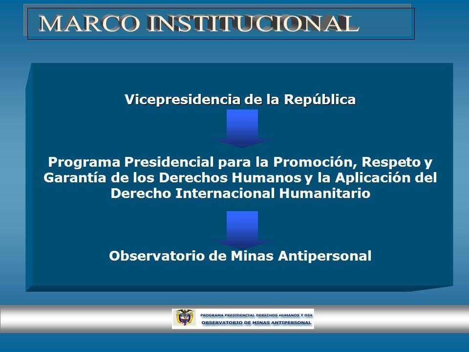 Vicepresidencia de la República Programa Presidencial para la Promoción, Respeto y Garantía de los Derechos Humanos y la Aplicación del Derecho Intern