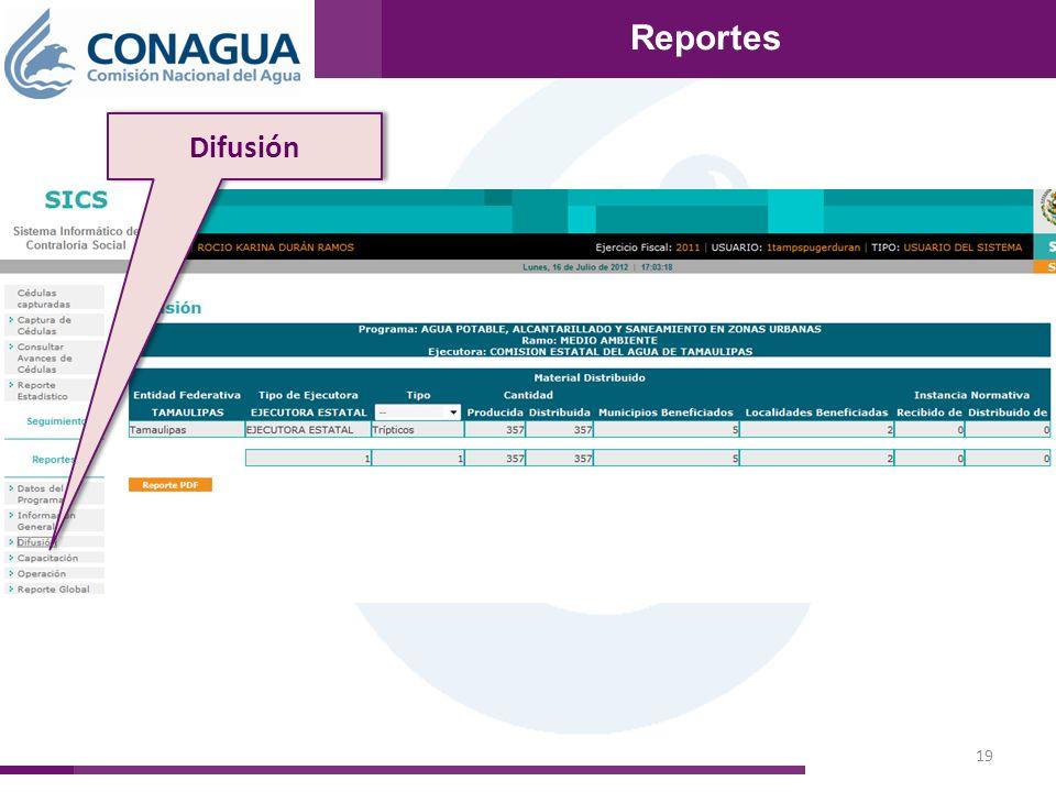 19 Reportes Difusión Reportes